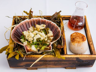 Edinburgh Evening News 68 - Duo of Hand Dived Scallops with Dashi Broth