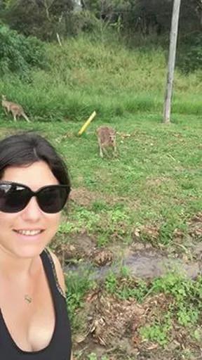 Australia backpacking kangaroo selfie