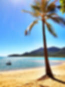 Day trips in Airlie Beach