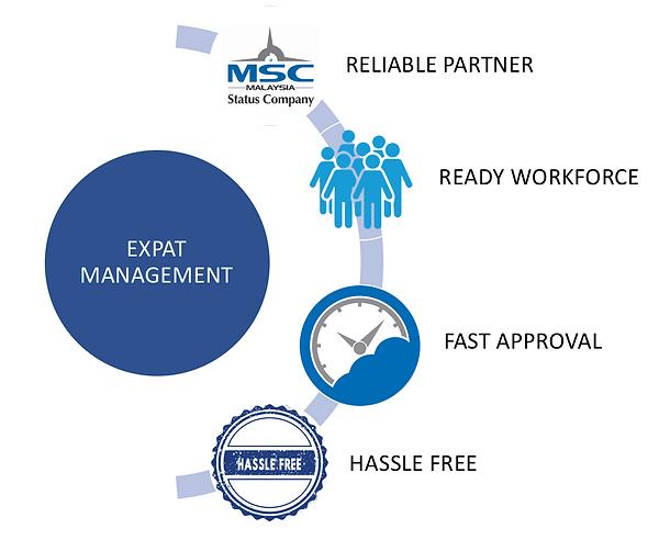 Employment Pass Process
