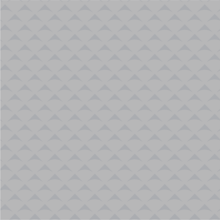 NCCC_Pattern-Small-2-Web.png