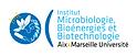 logo IM2B.png
