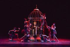 La Cage Aux Folles by Harvey Fierstein