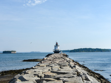 My Favorite South Portland Spots