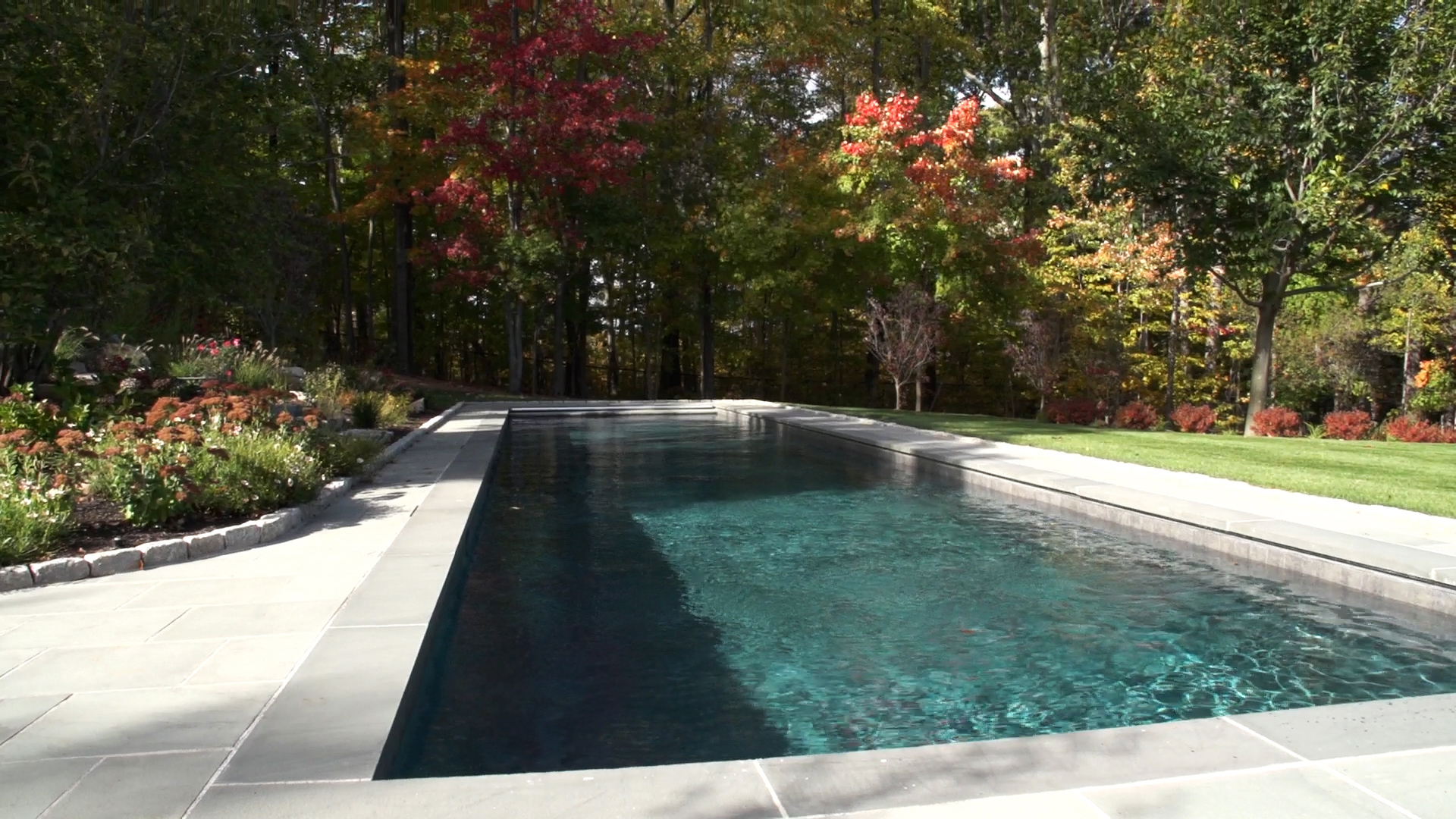 Connecticut Pool & Spa Lap Pool