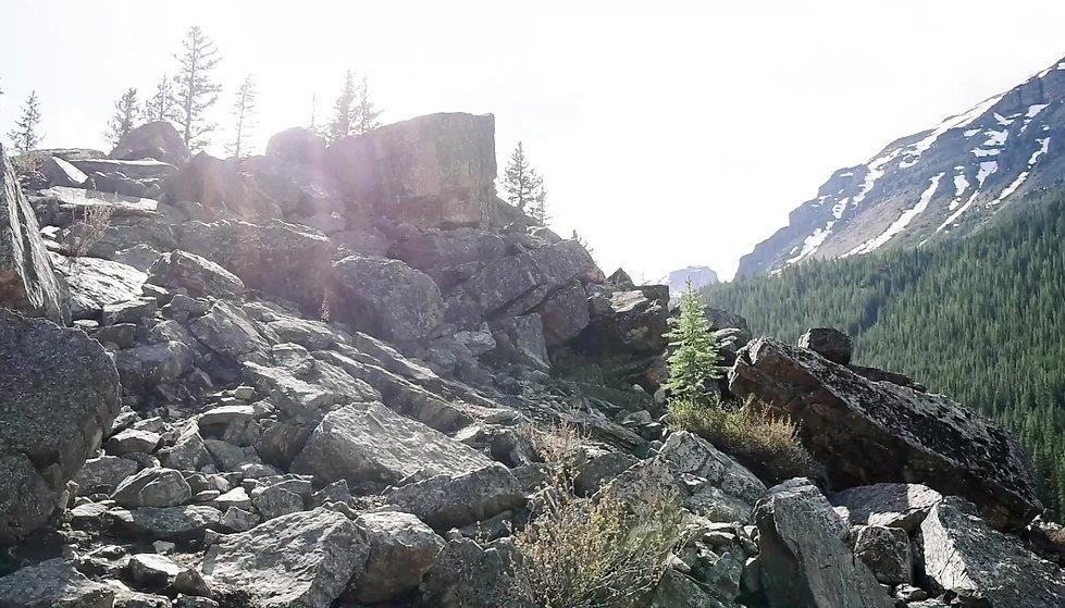 Banff Alberta National Park Elopement