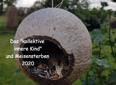 """Das """"kollektive innere Kind"""" und Meisensterben 2020"""