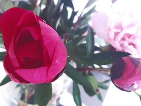 Die Entfaltung unserer Herzensblüte