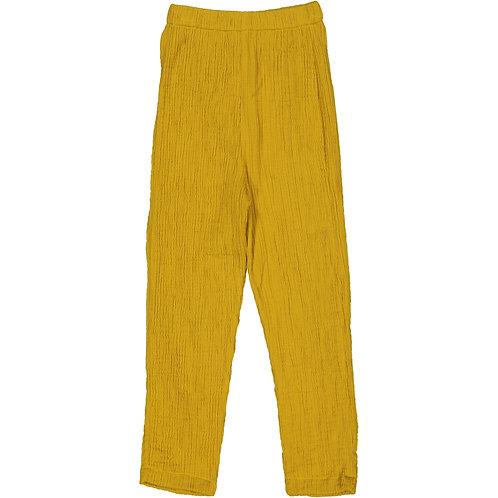 Wrinkled Leggings - Creamy Mustard - Kid