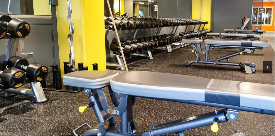 gym 1.PNG