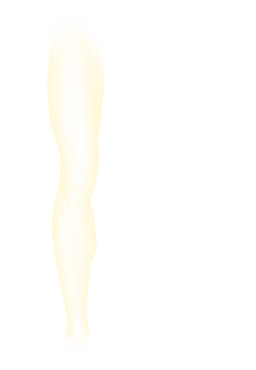 ORTHOsilhouette(jambe).png