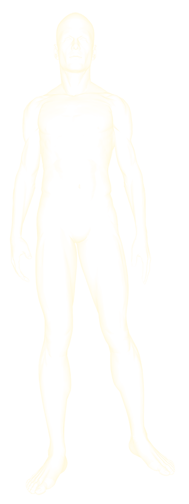 ORTHOsilhouette(base).png