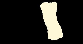 ORTHOsilhouette(genou).png