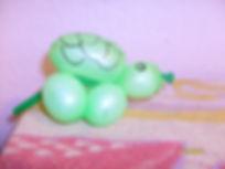 08_turtle (2).jpg