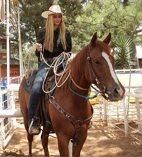 cat_saddle.JPG