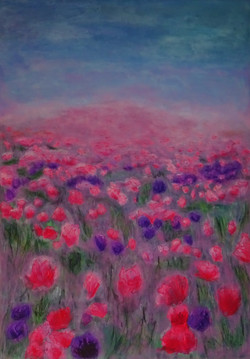 Meadow of Roses