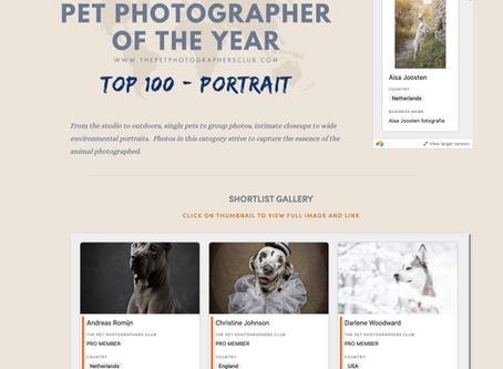 Two Photos Shortlisted in the top 100 of the International Pet Portrait Awards 2020