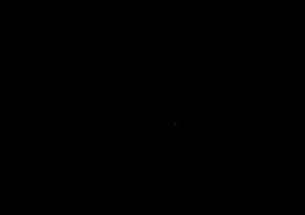 ANNELIZE BLACK Logo No Background.png