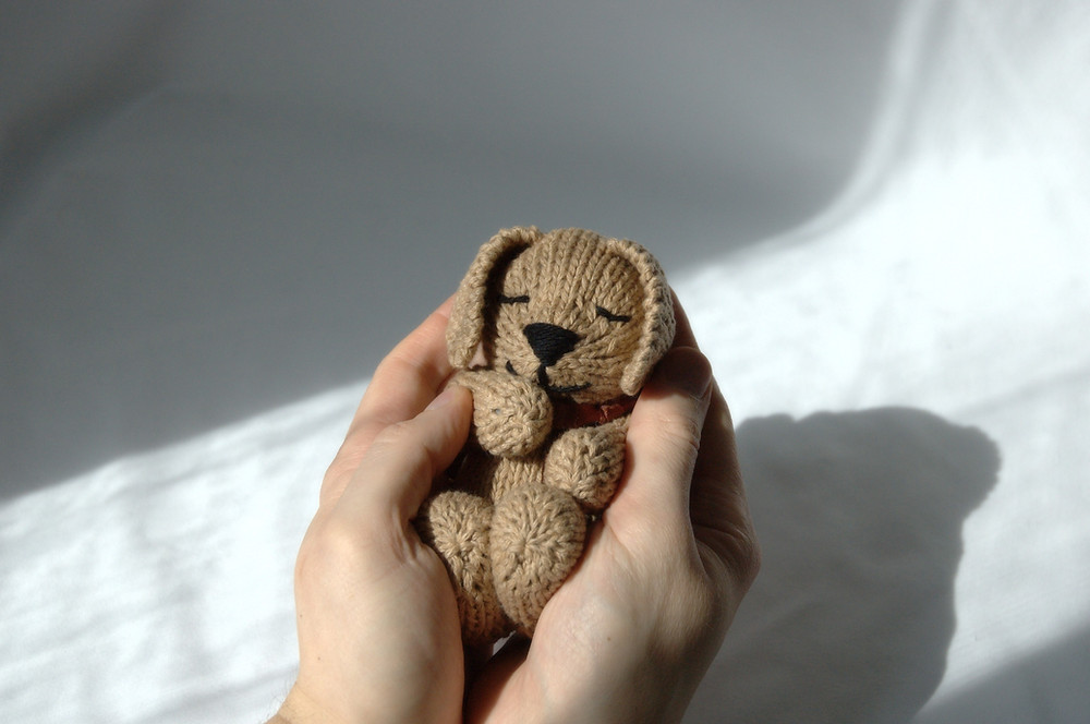Adult hands holding the knitted toy puppy