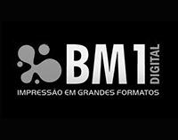 21-BM1.png
