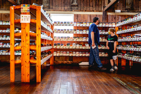Customers shopping for seeds