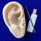 Ear Reflexology tools.jpg