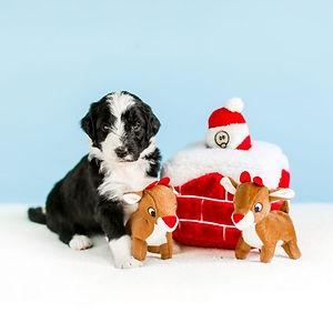 holidaychimneyburrow-768x768.jpg