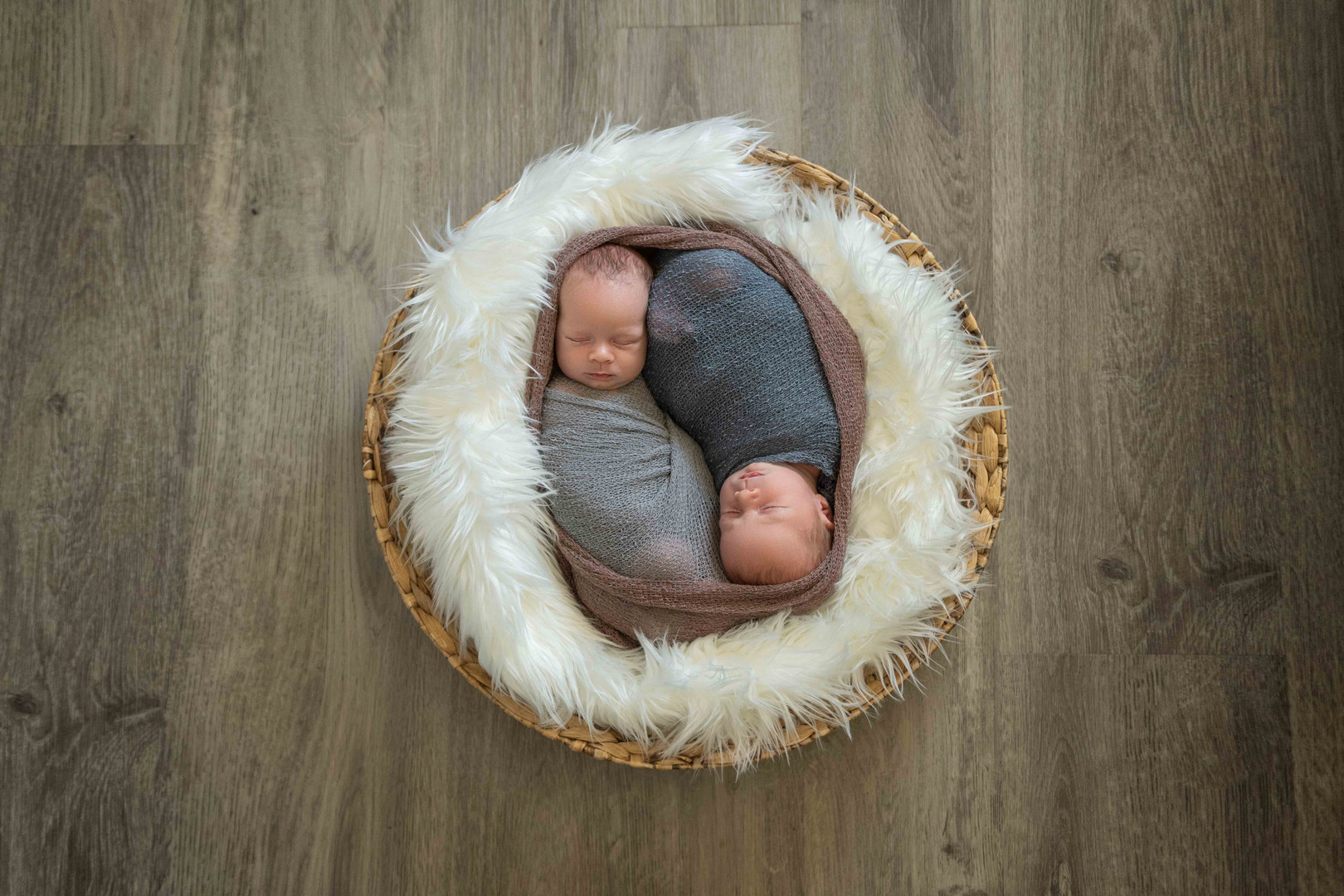 perth newborn twins photography