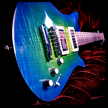 Custom Guitar Models