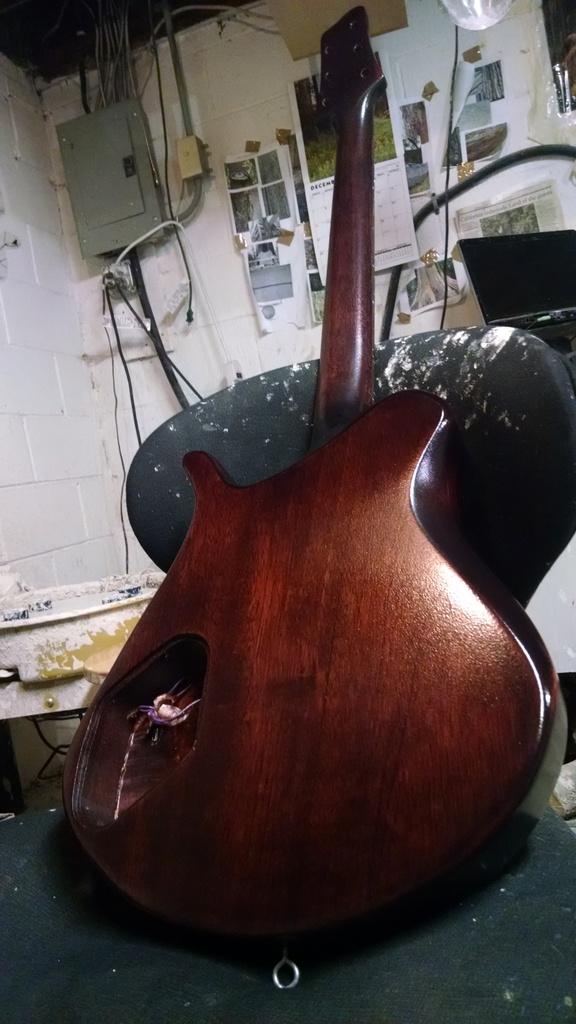 Vayu Guitar Back
