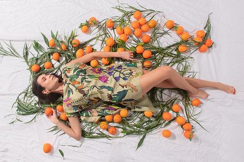 Jungle, Emmanuelle Silk