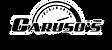 Carusos Auto Logo 2017 (1).png