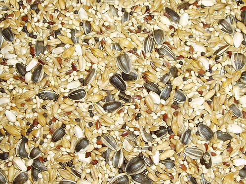 Topflite Cockatiel Seed Mix