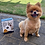 Thumbnail: Doggy Biscuit Baking Mix