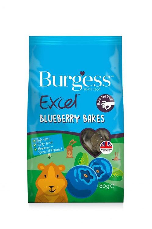 Burgess Excel Bakes