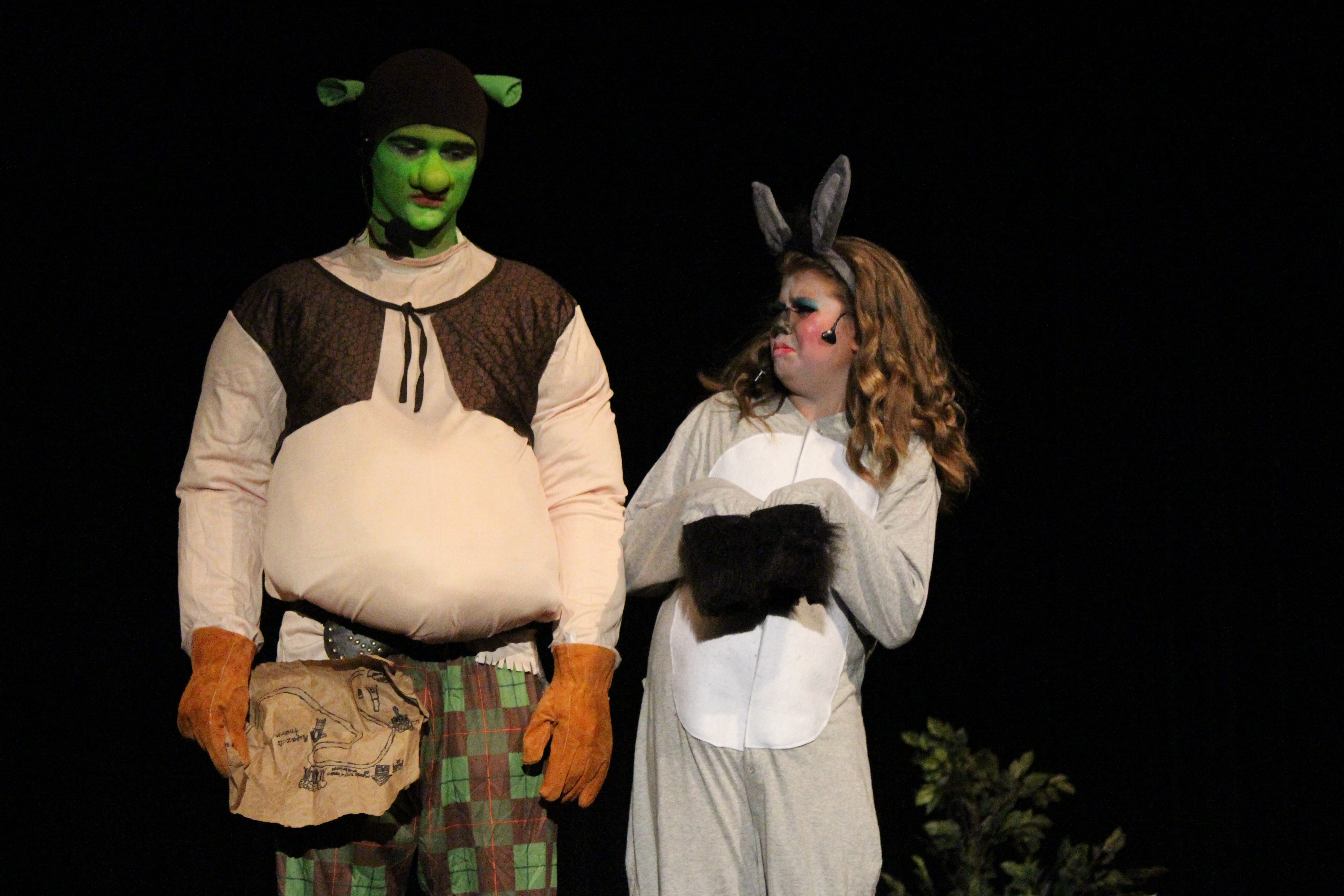 Shrek at RockShow Academy