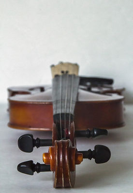 violin-616796_1280.jpg