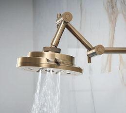 Babe Hefner Shower Fixture.jpg