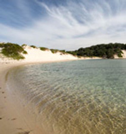 Lake Conjola - beach.jpg