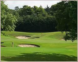 golf course (2).jpg