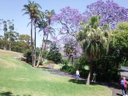 Botanic Gardens (8) - Day Trip.JPG
