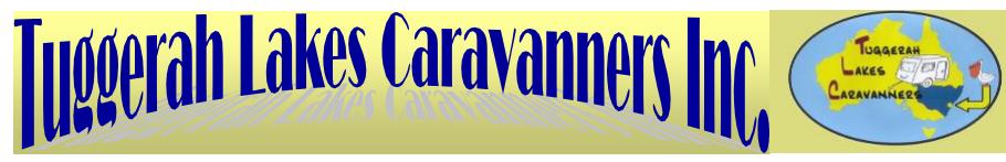 Newsletter header - with logo.png
