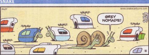 Grey Nomads (snails).JPG