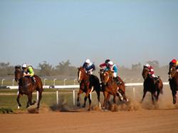 Louth races.jpg