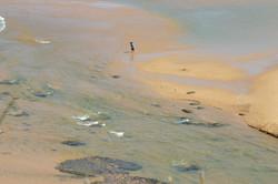 Narrabeen Scenery from Headland (5).JPG