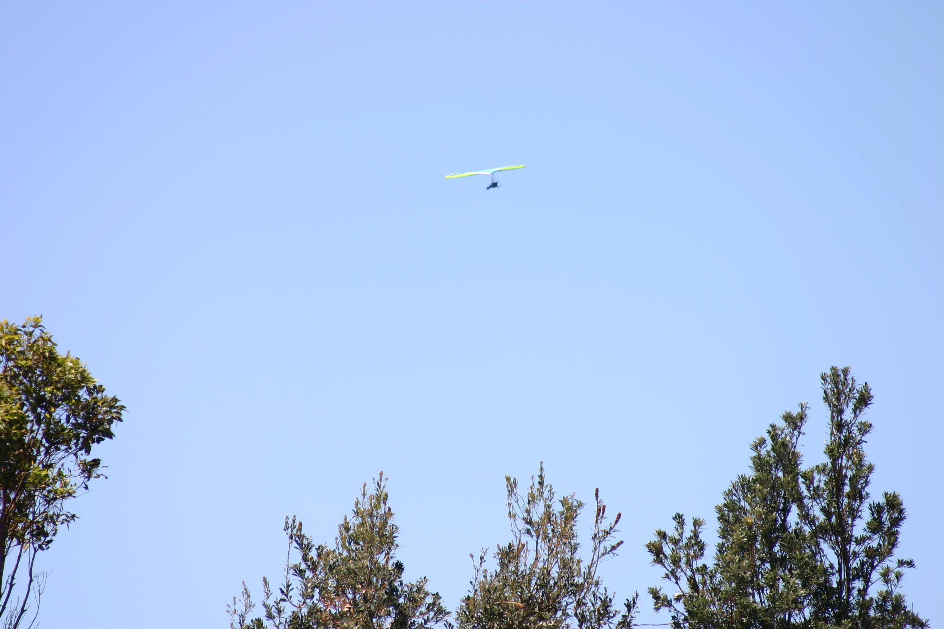 Narrabeen Hang Gliding (2).JPG