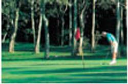 Sandbar - golf.jpg