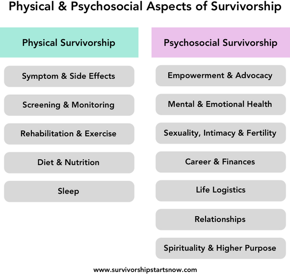 12 Areas of Cancer Survivorship