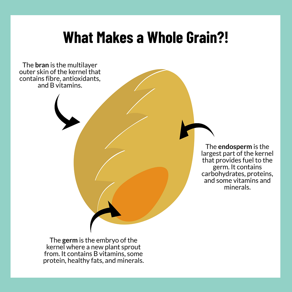 A diagram explaining the different parts of a whole grain. The outer part of the grain is known as the bran. It is the multilayer outer skin of the kernel that contains fibre, antioxidants, and B vitamins. The endosperm is the largest and inner part of the grain. It fuels the germ and contains carbohydrates, proteins and some vitamins and minerals. Lastly is the germ. The germ is the smaller inner part of the grain. It is where a new plant sprouts. It contains B vitamins, some protein, healthy fats, and minerals.