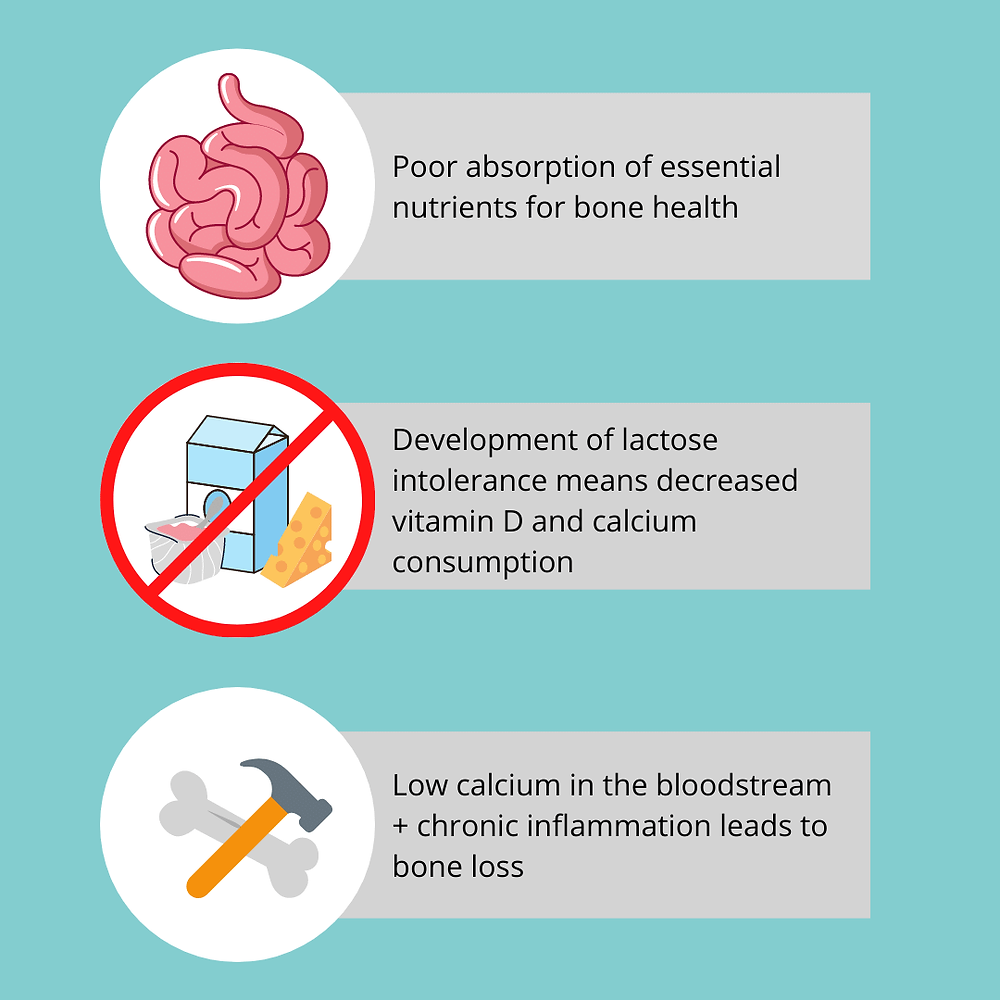 "Picture outlines the three common paths that lead to metabolic bone disease in celiac disease. The first one is a picture of pink intestines with the caption beside it ""poor absorption of essential nutrients for bone health"". The second is a picture of a blue milk carton, a triangle of cheddar cheese, and strawberry yogurt with a red X through it. The caption beside it states, ""Development of lactose intolerance means decreased vitamin D and calcium consumption."" The last image is of a bone and hammer with the caption, ""Low calcium in the bloodstream plus chronic inflammation leads to bone loss."""